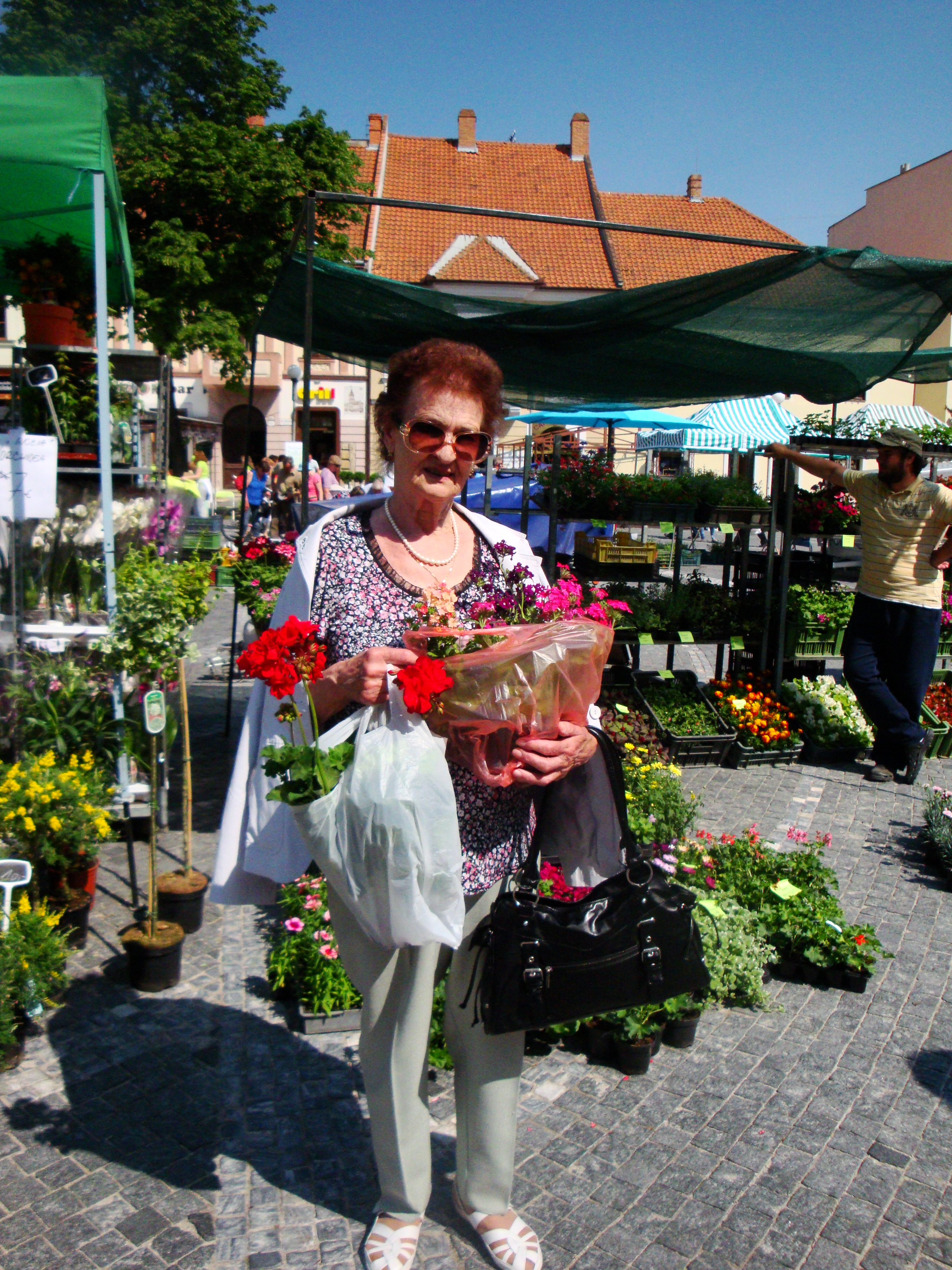 Výstava kvetov 2012